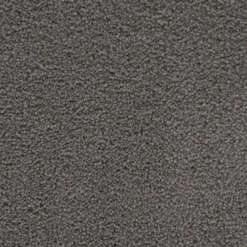 Stainmaster Petprotect - Simple Attraction Metallic Grey 89056