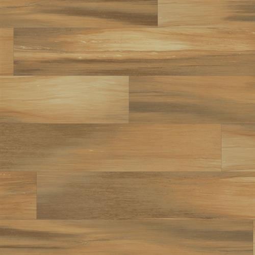 Evolution Plank Genealogy