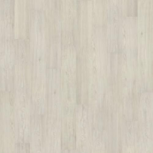 Royal Palm Flooring Cool White