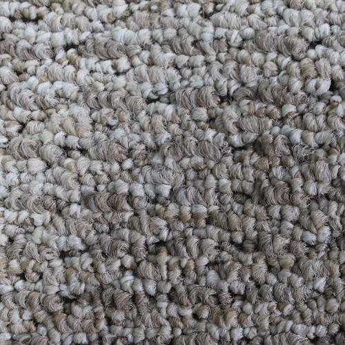In Stock Commercial Carpet  4004
