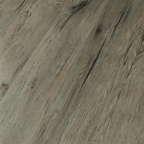 Driftwood Pine