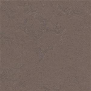 VinylSheetGoods MarmoleumConcrete 3568 DeltaLace