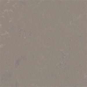 VinylSheetGoods MarmoleumConcrete 3702 LiquidClay