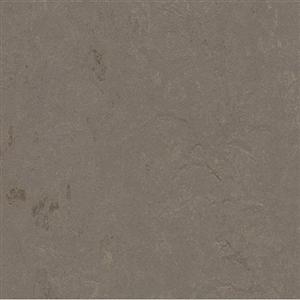 VinylSheetGoods MarmoleumConcrete 3705 Meteorite