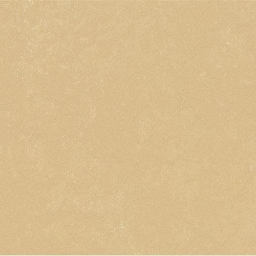 Marmoleum Concrete Venus