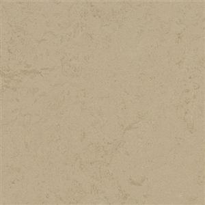 VinylSheetGoods MarmoleumConcrete 3728 Kaolin