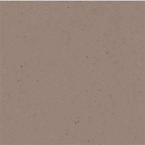 VinylSheetGoods MarmoleumCocoa 3580 MilkChocolate