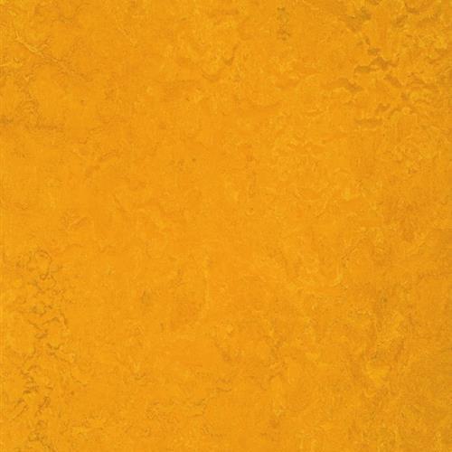 Marmoleum Fresco Golden Sunset