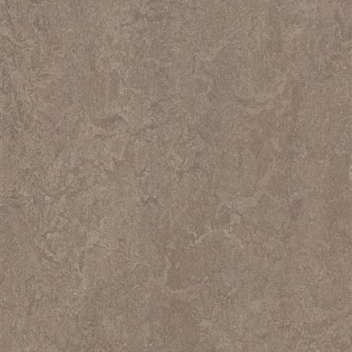 Marmoleum Fresco Shrike