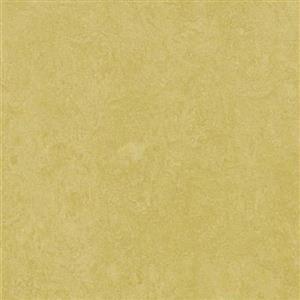 VinylSheetGoods MarmoleumFresco 3259 Mustard