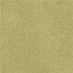 VinylSheetGoods MarmoleumFresco 3265 Avocado