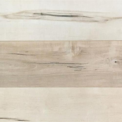 Laminate Collection Modern Maple