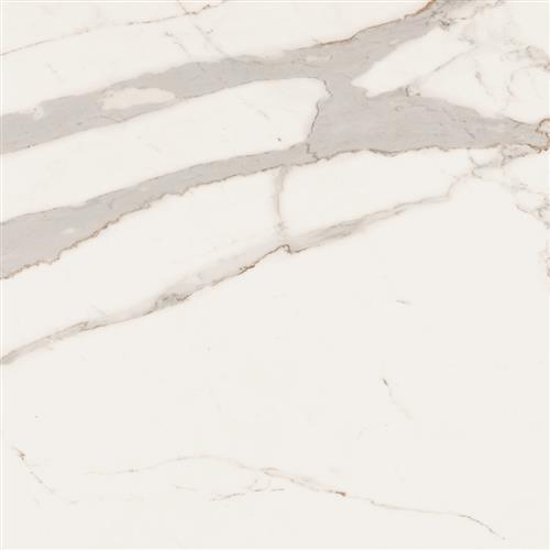 Bianco Series Calacatta Borghini 3636