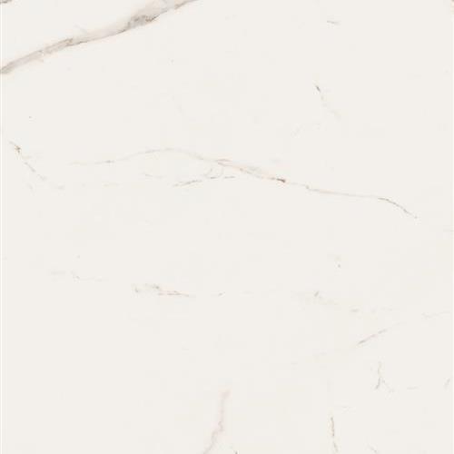 Bianco Series Calacatta Borghini - Polished