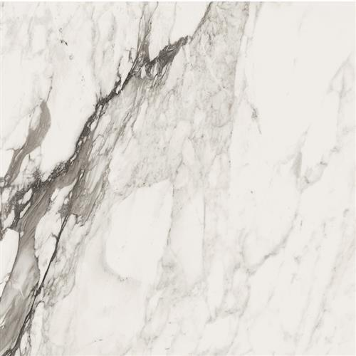 Bianco Series Calacatta Renoir 3636