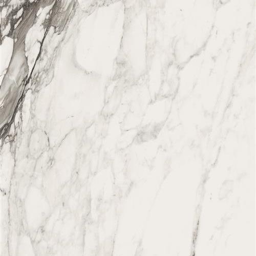 Bianco Series Calacatta Renoir - Polished