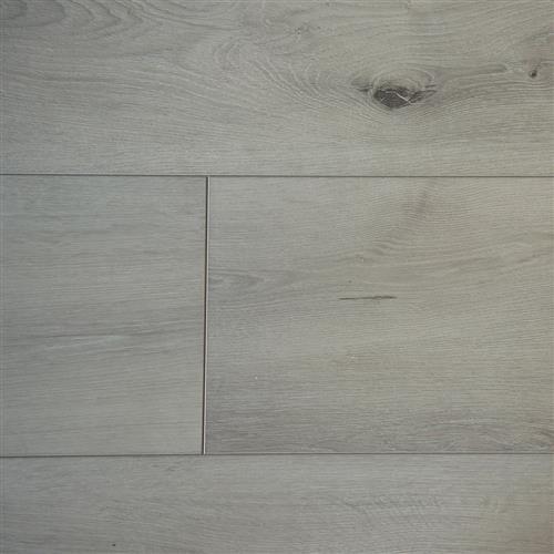 Innova Collection Silver Oak