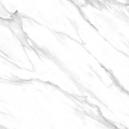 Carrara Venezia White