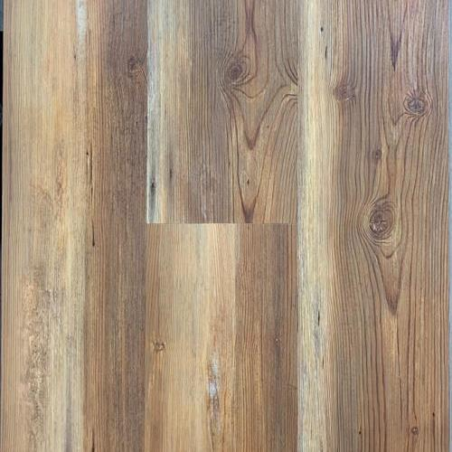 Pontchartrain Pine