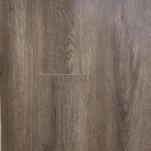 Porters Oak