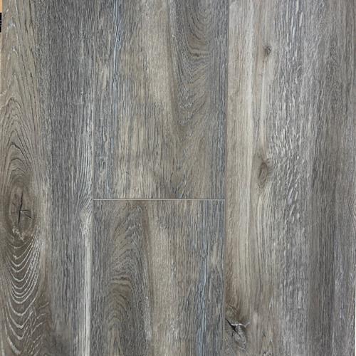 Coastal Oak