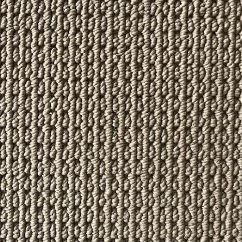 In Stock Carpet  Capri-Harborside