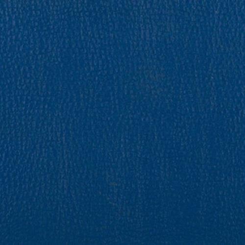 Sports Flooring Blue