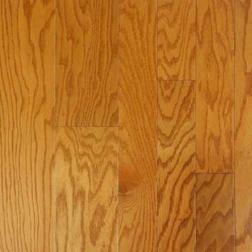 American Collection Red Oak Golden Oat