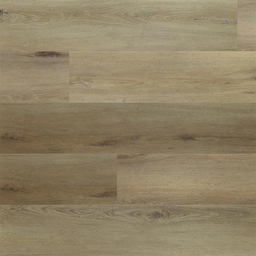 Density HD Oak Sauvignon