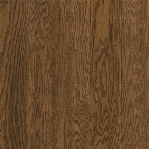 Prime Harvest - Solid Forest Brown 325