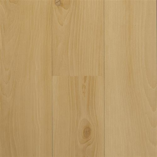 Acoustic Collection Accent Beech