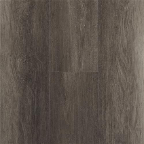 Acoustic Collection Forte Oak