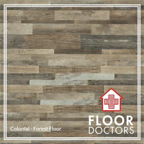 SPC - Colonial Forest Floor