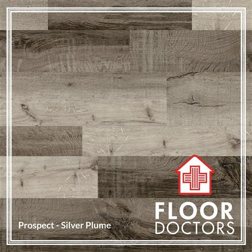 Prospect Silver Plume