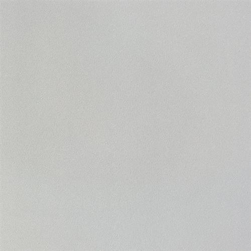 Monocolori Light Grey 12X24 Matte/Mat
