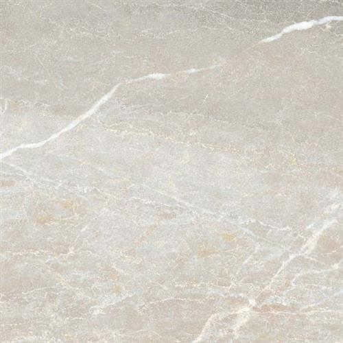 Absolute Marble Emperador 12X24 Pressed
