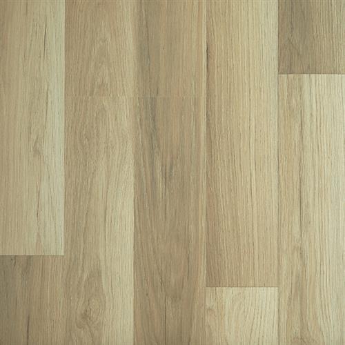 Oak Petrona