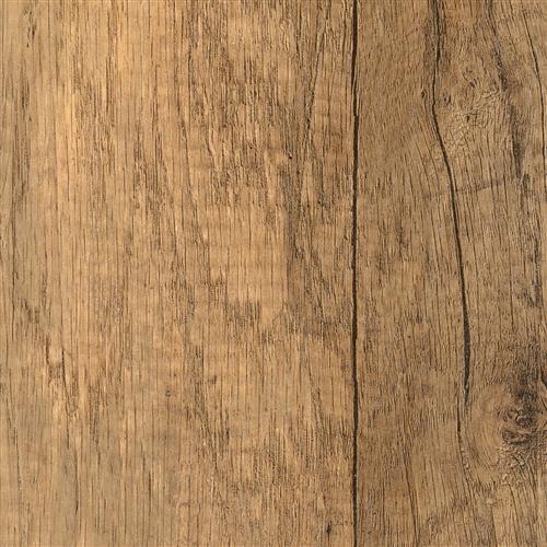 Oak Angola