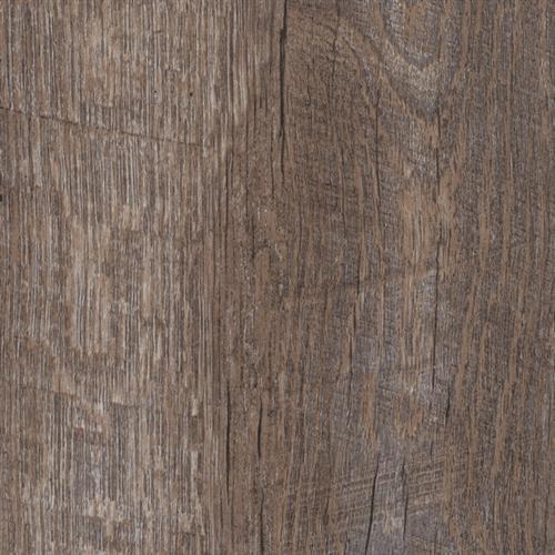 Windsong Oak