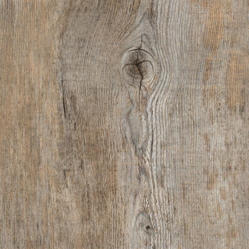 Long View Pine
