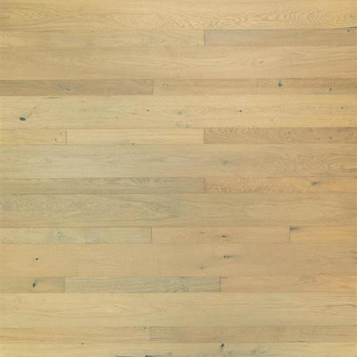 Longhouse Plank Collection Jutland