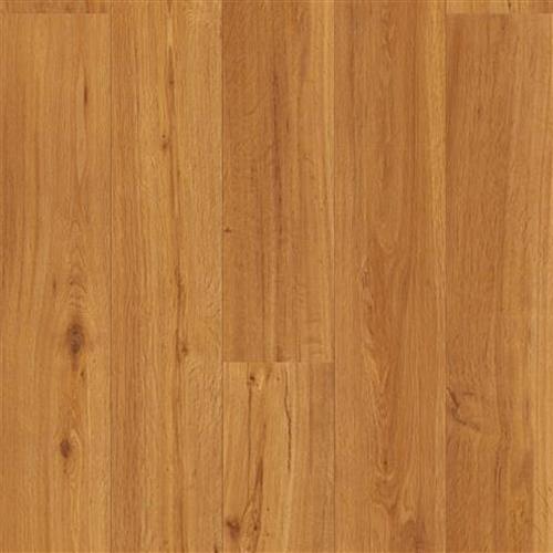Essential Sun Valley Oak