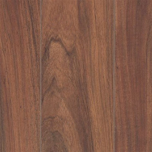 Havermill Sunbeam Acacia