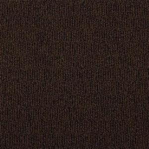 Carpet Access AX24X24 ComeIn