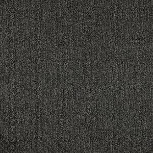 Carpet Access AX24X24 Ingress