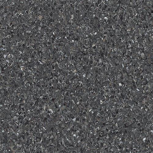 Accolade Plus Black Opal