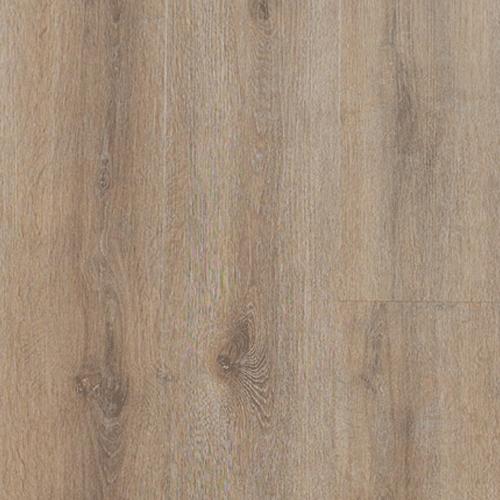 Veran Plank Dagsboro