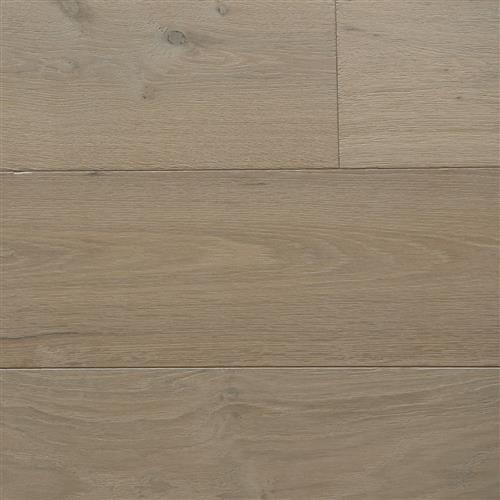 English Forest Collection European Oak Frost