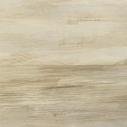 Snowhill Pine