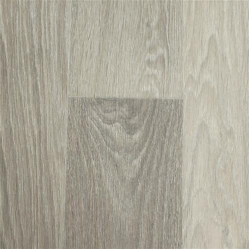 Clarity Odyssey Oak Oat